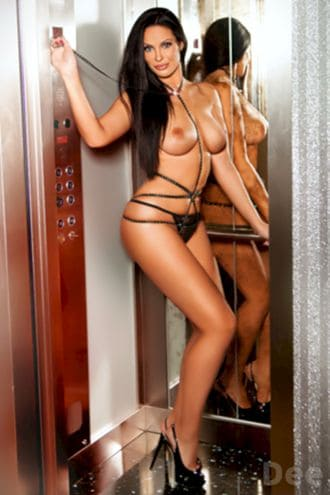 Female Escort and Call Girl Dee in the United States (Image 2)