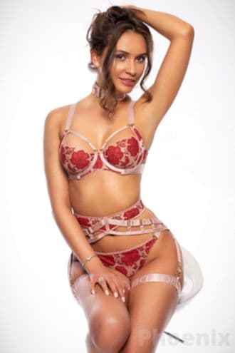 Female Escort and Call Girl Phoenix in the United States (Image 3)